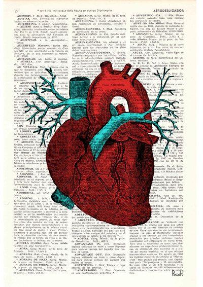 Wall art print Human Heart Wall art Anatomy study print, Medicine, graduation gift, Giclee print Human heart study, gift SKA057