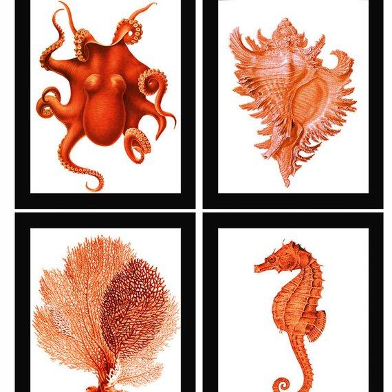 Red Orange Coral Sea Fan Octopus Conch Shell Seahorse Vintage Style Nautical Art Print Set Of 4 Natural History Beach House Decor Nautical Art Art Prints Prints