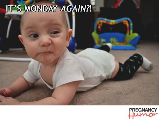 20 Funny Baby Pictures to Help You Forget About Your Morning Sickness and Swollen Ankles - Page 18 of 20 - Pregnancy Humor