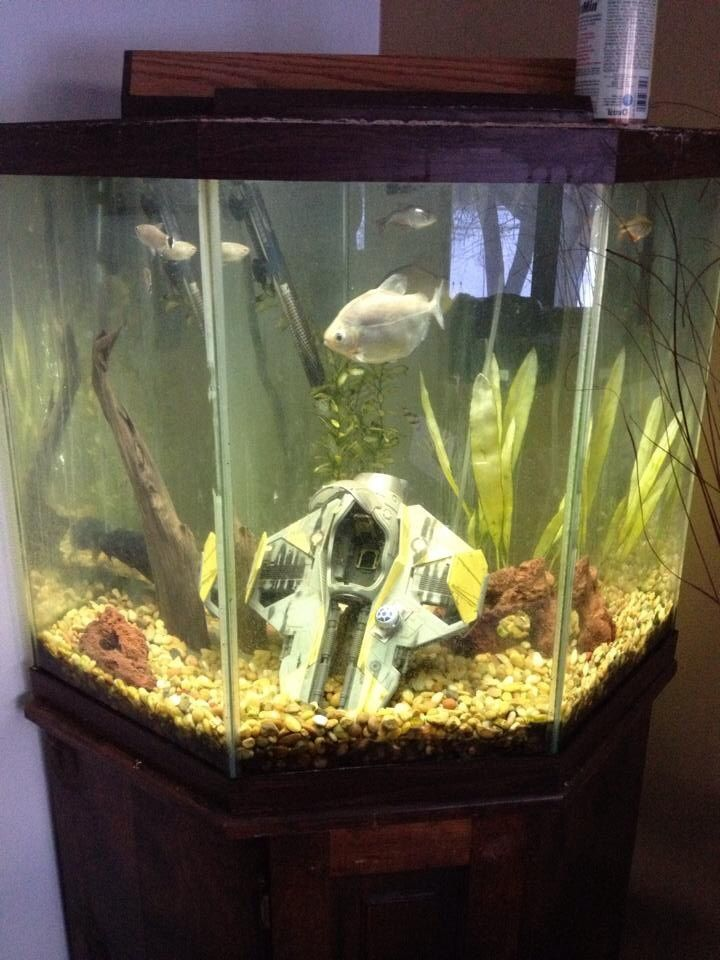 Star wars aquarium geeking out aquarium kids aquarium aquarium decorations - Decorative fish tanks for living rooms ...