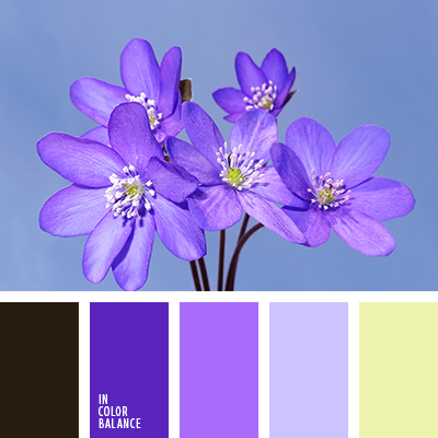 Spring colors inspiration. Color combination, color pallets, color palettes…