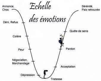 Echelle Des Emotions Phase De Deuil Et Reconstruction Citations Psychologie Emotions Phase Du Deuil