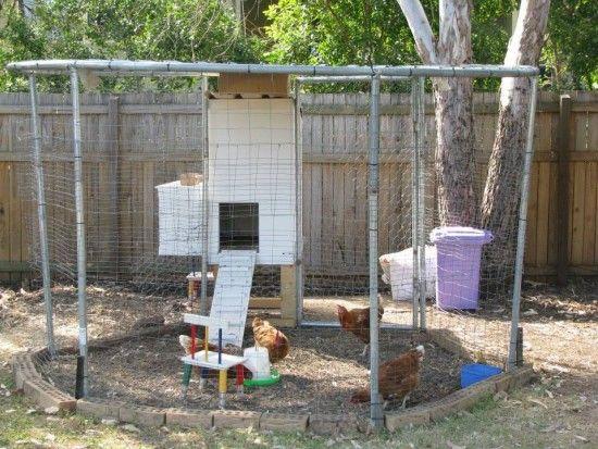 Trampoline Chicken Coop Plans Diy Video Tutorial Diy Chicken Coop Plans Building A Chicken Coop Chickens Backyard