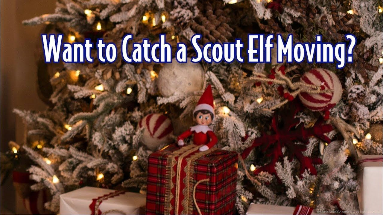 How To Catch The Elf On The Shelf Moving Fun Videos For Kids Family Friendly Youtube Channels Elf On The S Christmas Gif Very Merry Christmas Holiday Fun