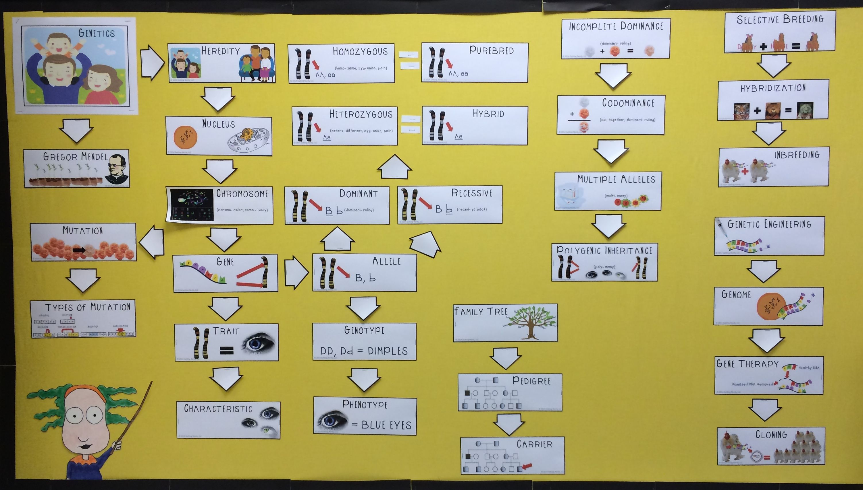 This illustrated visual word wall addresses student\'s needs with ...