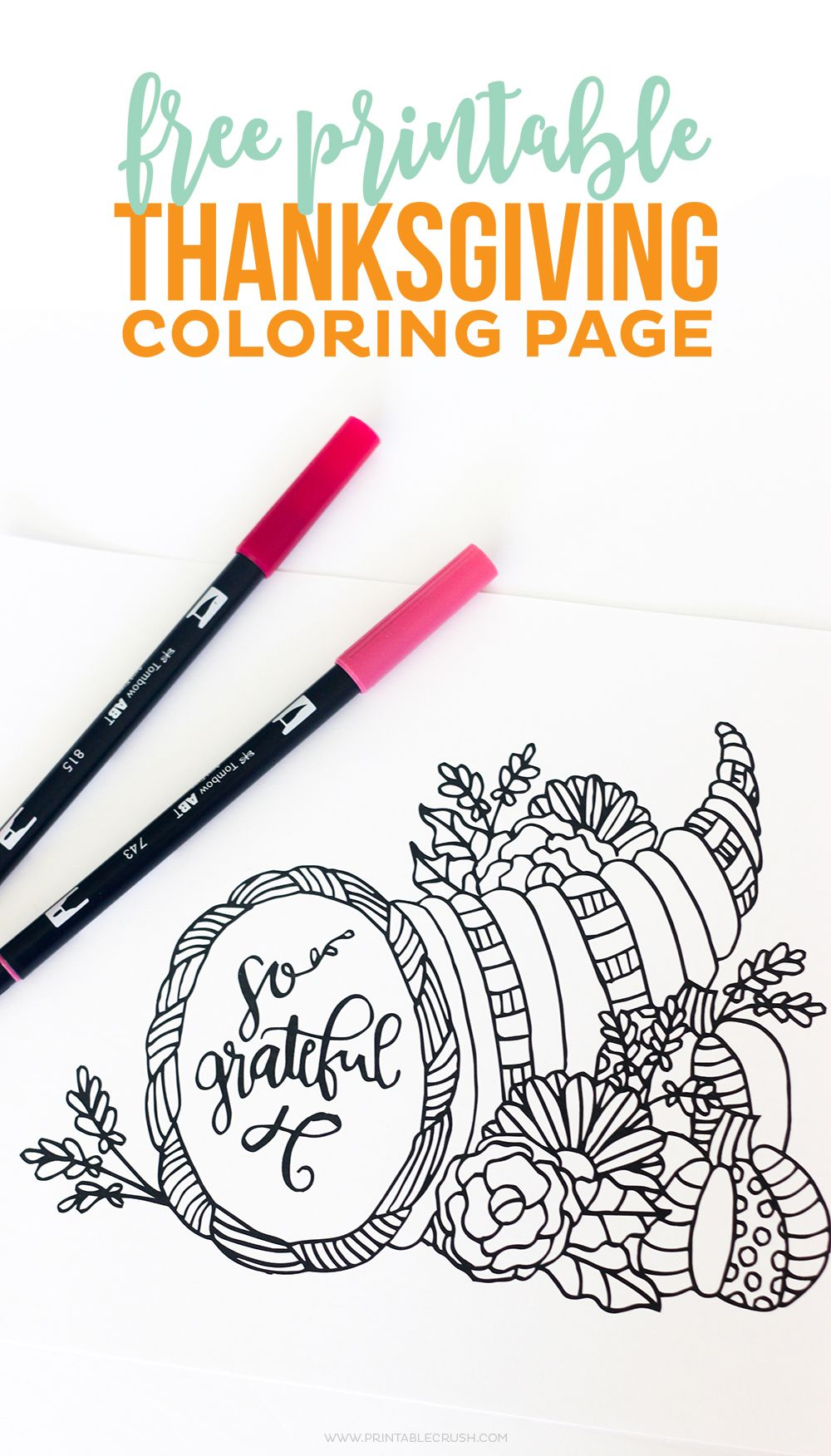 Download this pretty Thanksgiving Coloring Page for your dinner ...