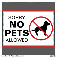 image result for no dogs allowed signs printable no dogs signs