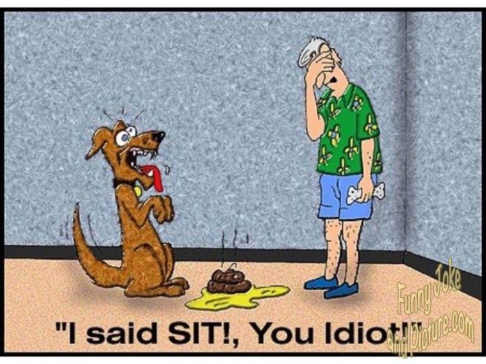 LMAO!!! Sit