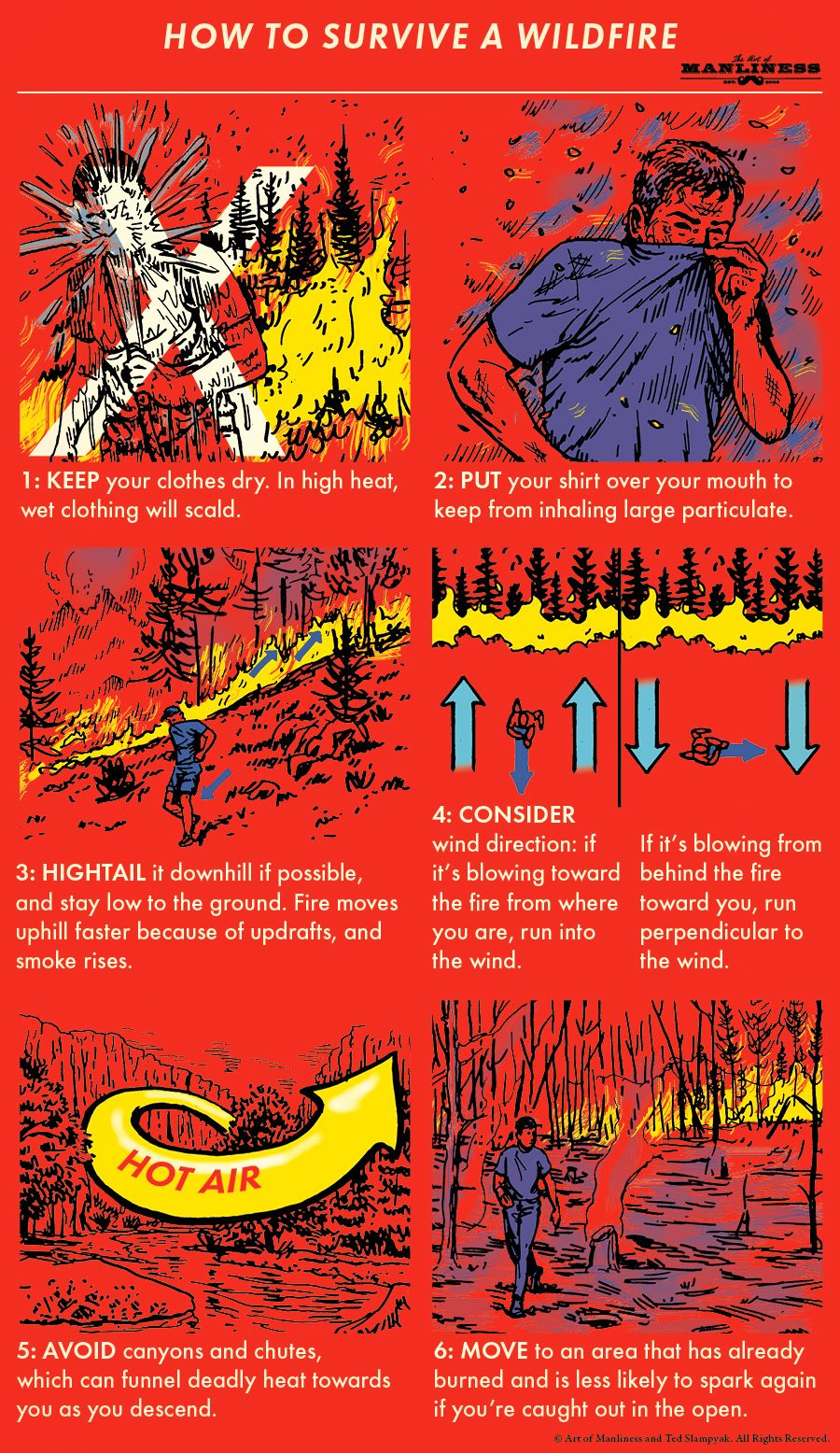 How To Survive A Wildfire Survival Skills Survival Life Hacks