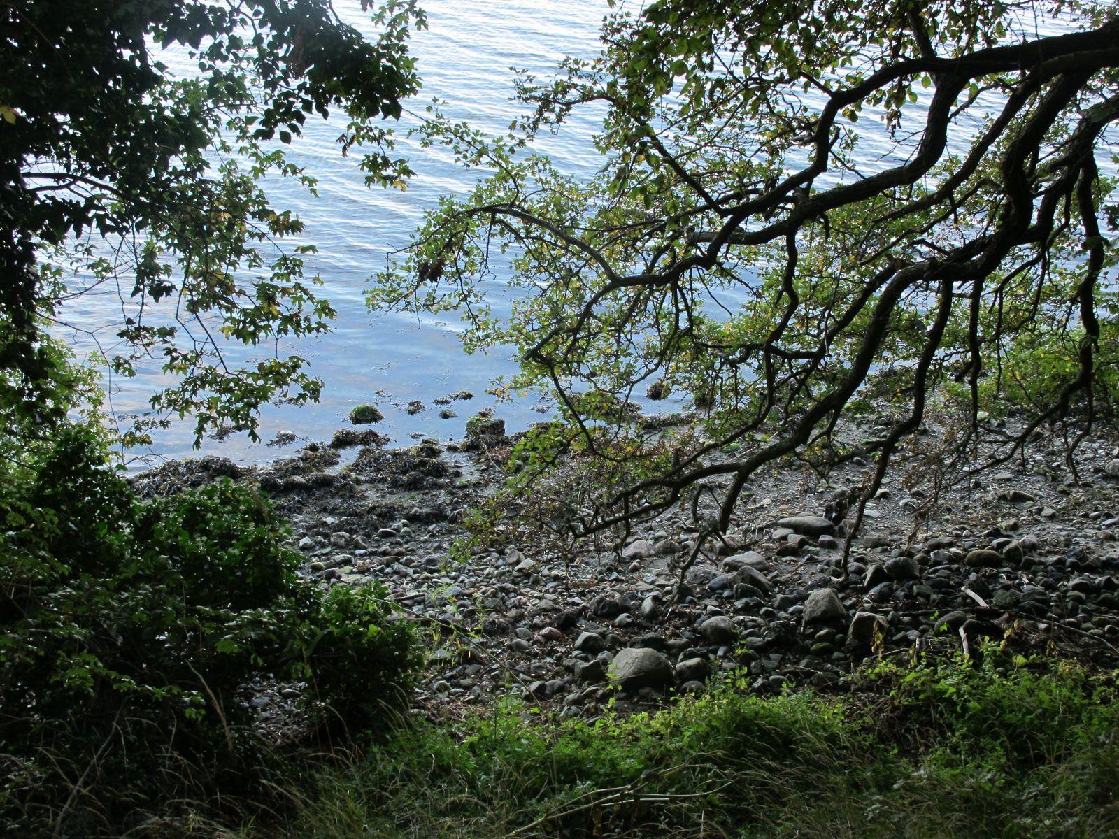 #visitwestzealand #visitskaelskoer #visitvestsjaelland #visitsjælland #visitskælskør #visitzealand #visitdenmark Skælskør nor #visitwestzealand