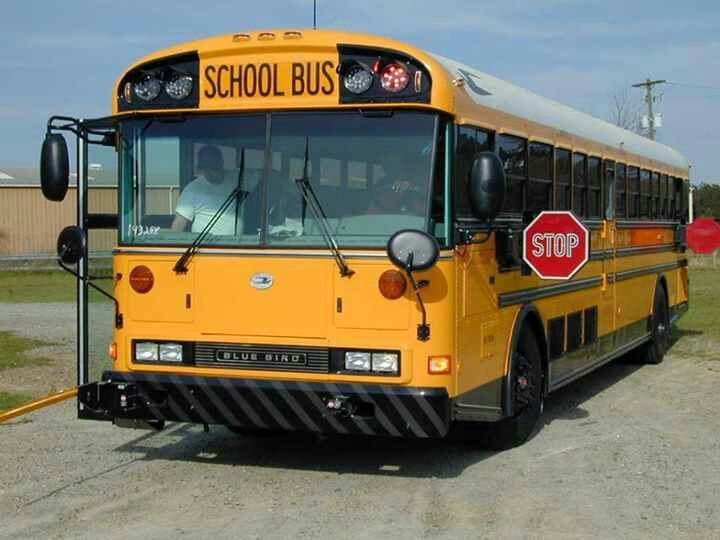 Blue Bird Re School Bus Im Not A Fan Of Flat Nose School Buses But This Bus Is Awesome Clear Led Overhead Amber Red Lig School Bus Bus International Truck