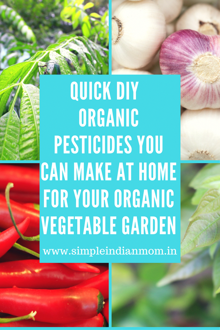 Quick DIY Organic Pesticides You Can Make At Home For Your
