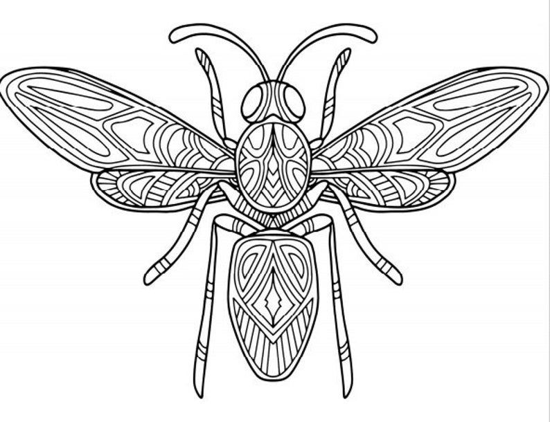 Coloring Pages 24 Printable Insect Designs Etsy In 2021 Insect Coloring Pages Coloring Pages Insects Wall Art