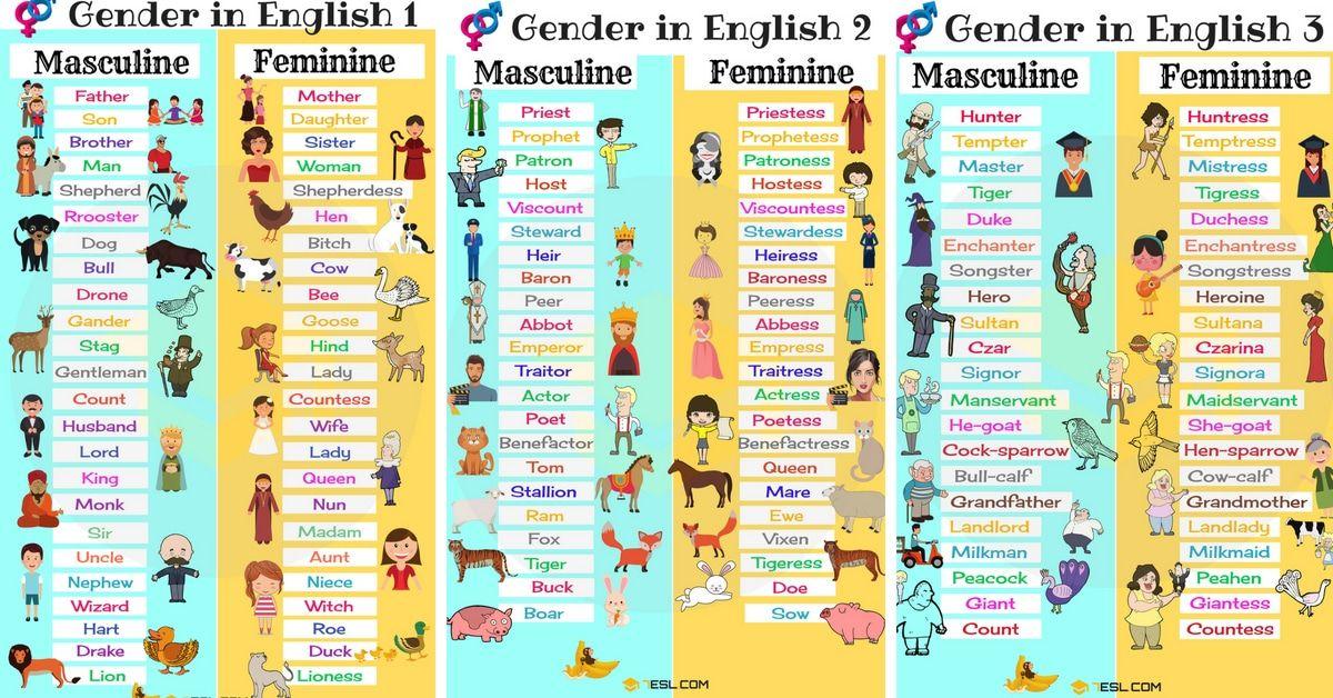Gender Of Nouns Useful Masculine And Feminine List Con Imagenes