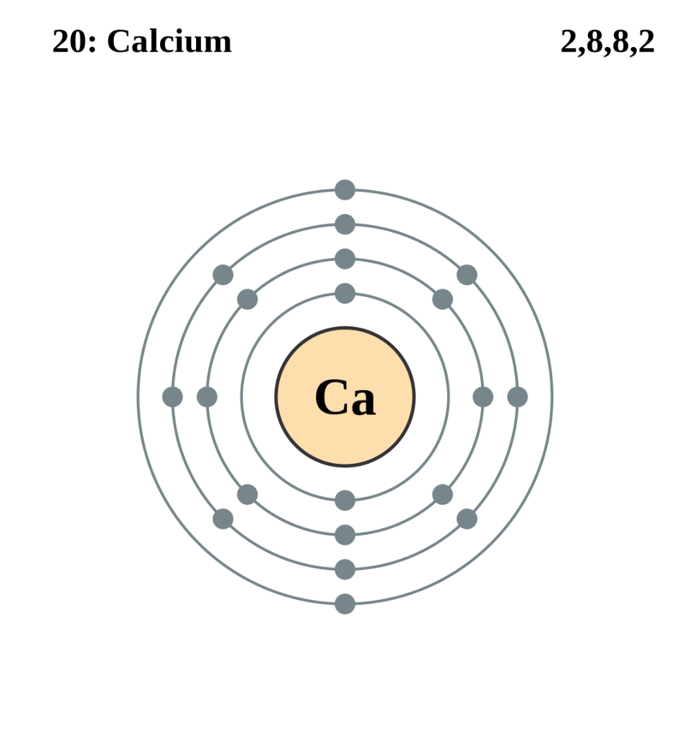 FileElectron shell 020 Calcium.svg Wikimedia Commons