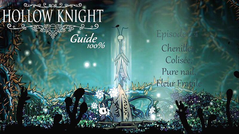 Guide for the delicate flower quest hollow knight
