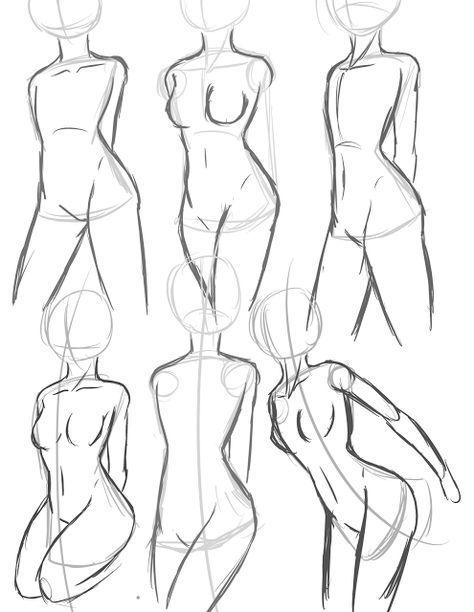 Torso and body proportions. Anime anatomy basic drawing tutorial ...