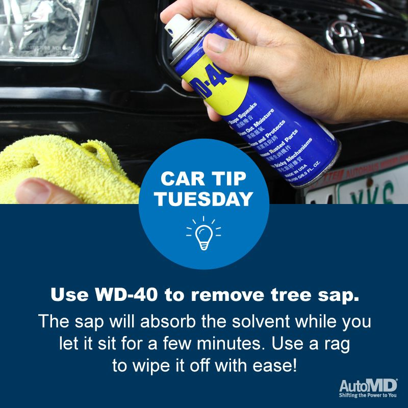 TipTuesday Use WD40 to remove tree sap Remove tree
