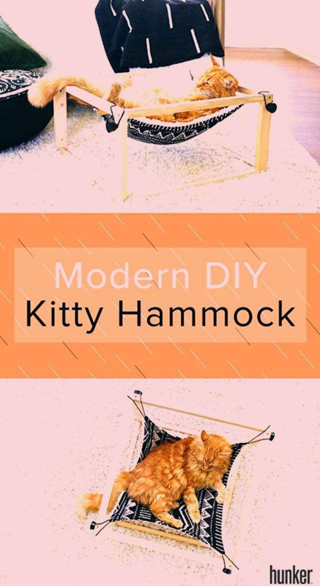 Decor Your cat should live as stylish as you do and this DIY kitty hammock is an easy way to do exactly that This cozy place for them to lounge matches you  New home