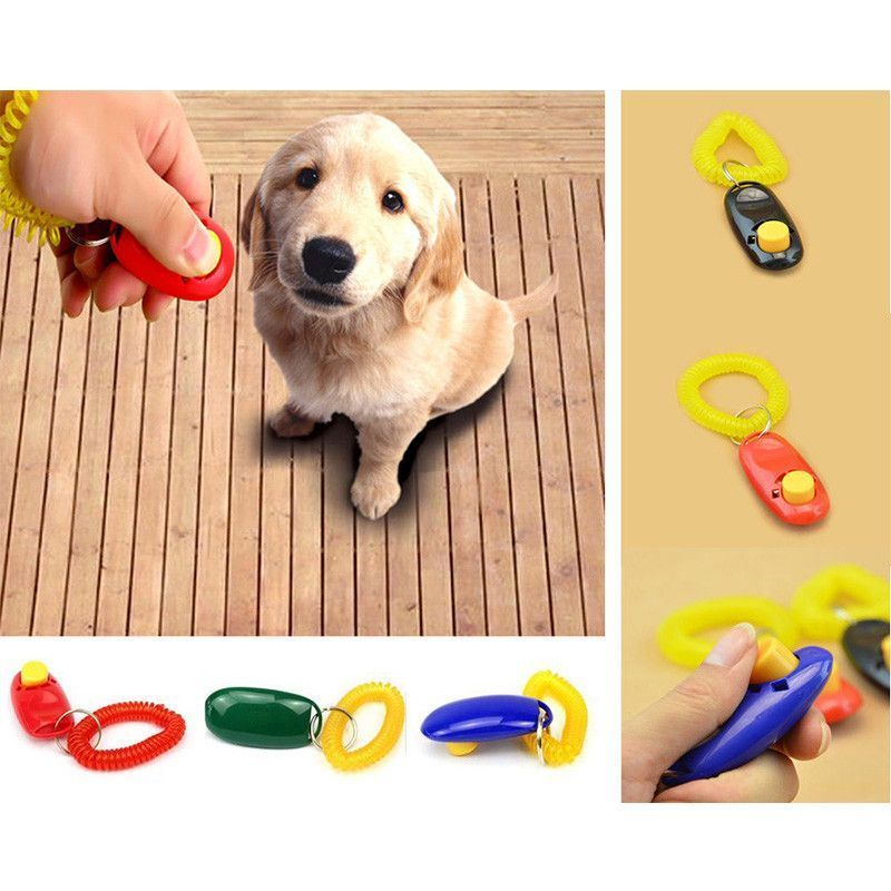 Pet Training Clicker Obedience Aid Dogclickertraining Dog