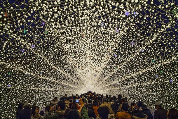 Winter Illuminations e está em exposição no jardim botânico de Kuwana, no Japão, em comemoração ao festival de inverno cujo tema deste ano é a natureza.