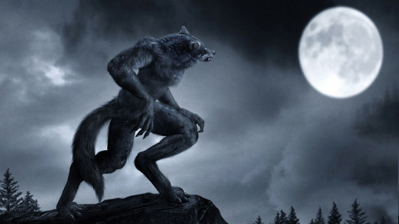 Animated Wolf Wallpaper Wolf Wallpaper Wallpaper Animation