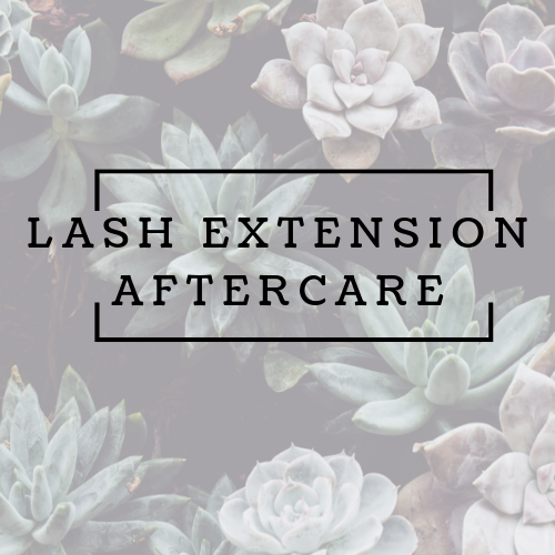 Lash Extensions After care Step by Step Editable Word Doc