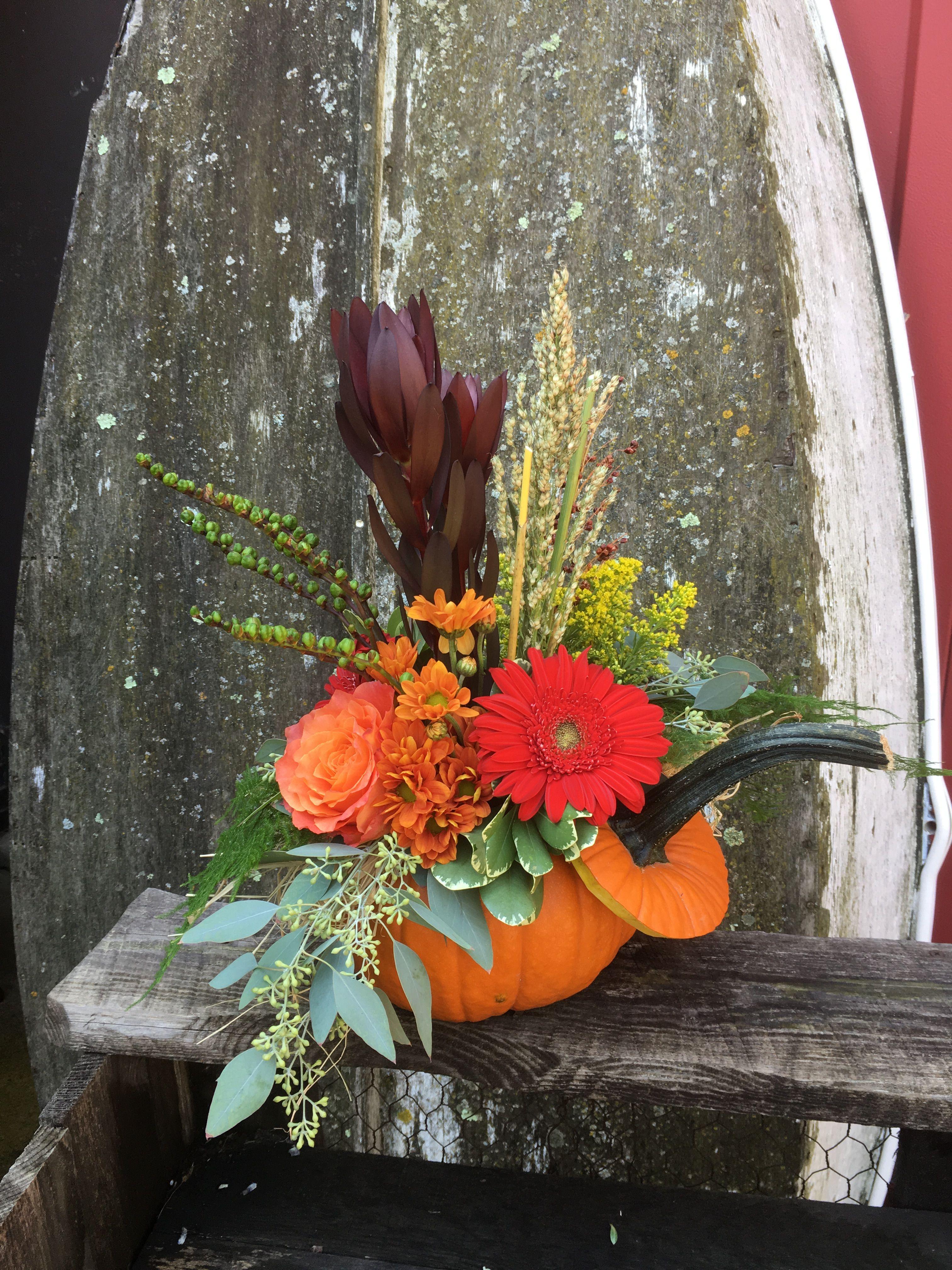 fall flower pumpkin arrangement with gerbera daisy, rose