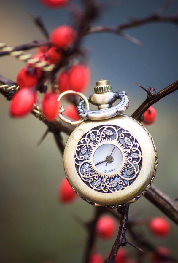 Pocket Watch #Clock #Fairy tale #Romantic #Time   Clock, Clock art, Old watches