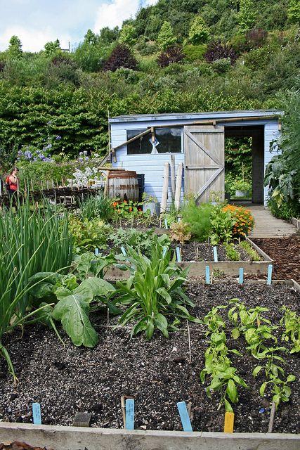 arquitetura-pessoal:  shed & vegetable garden by Alf M on Flickr.