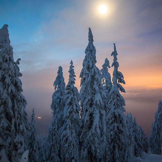 Moonshine by Nordic-Photo.