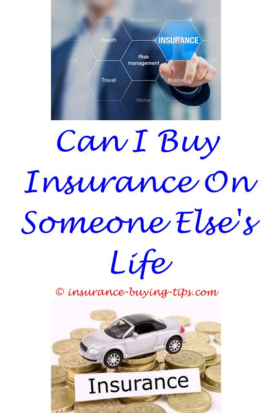 Quote Car Insurance Florida Buy Health Insurance And Permanent Delectable Permanent Life Insurance Quotes