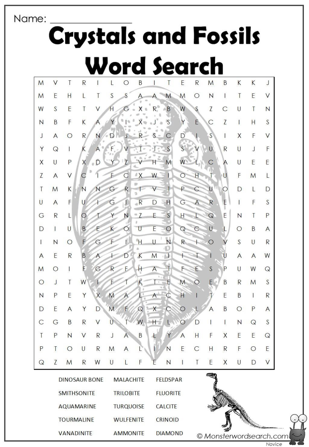 Crystals And Fossils Word Search In 2020 Crystals Fossils Word Search