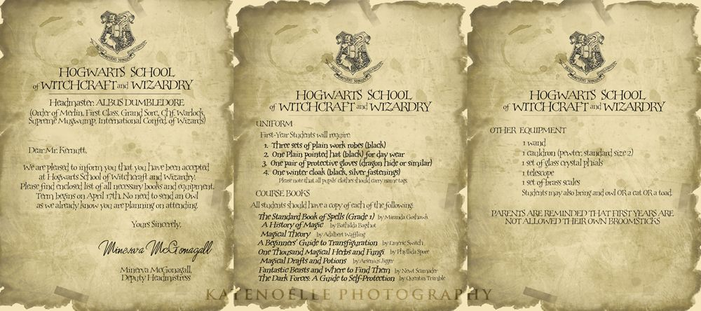 An adult harry potter party invitations class schedules find the an adult harry potter party invitations class schedules find the snitch spiritdancerdesigns Gallery