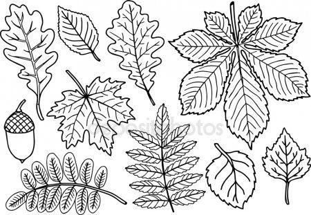 handgetekende vector kleurplaten pagina zwart wit