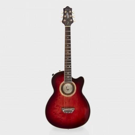 ESP Guitars For Paul Smith