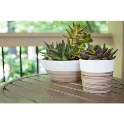 central garden and pet 10 in white bamboo ceramic low bowl 100523131 the - Central Garden And Pet