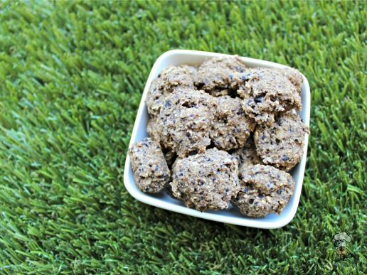 Blueberry Cantaloupe Easy Dog Treat Recipes Biscuit Recipe Dog