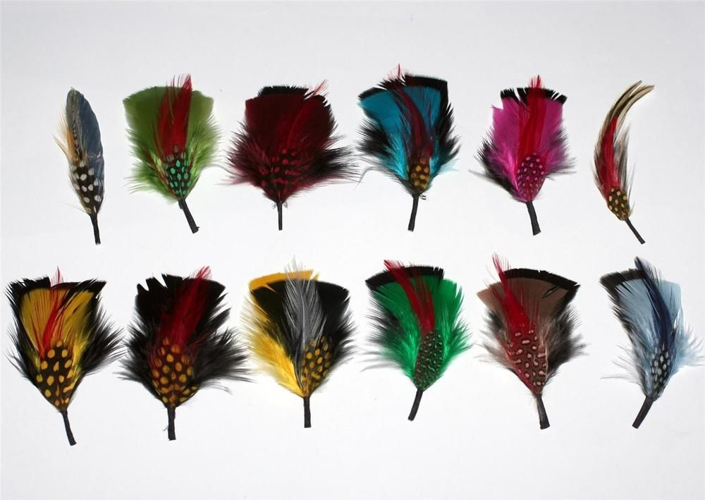 19a285bfcbe2a 12 Pcs Assorted MultiColor FEATHER PLUME TRIM for FEDORA DERBY GODFATHER HAT  New  Unbranded  FeatherPlume