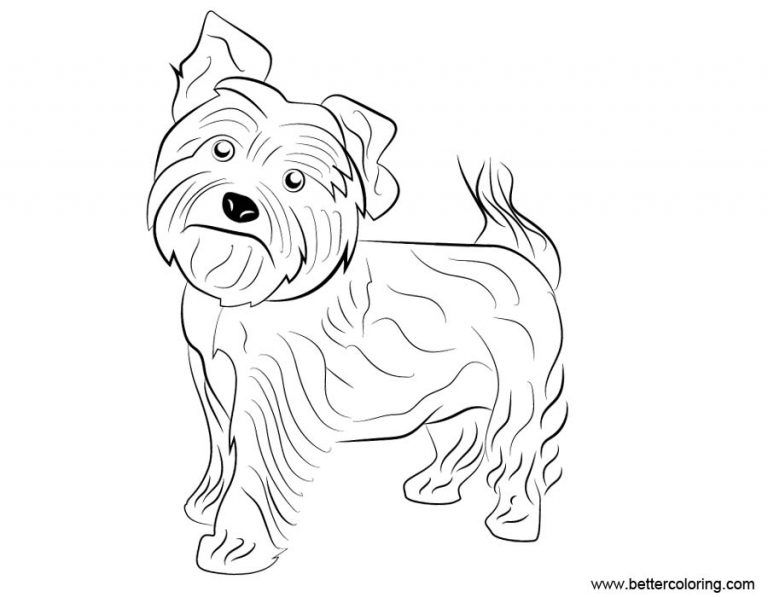 Free Yorkie Puppy Coloring Pages Yorkie Dog Coloring Pages Free Printable Coloring Pages Yorkie Free Puppy In 2020 Puppy Coloring Pages Dog Coloring Page Yorkie Puppy
