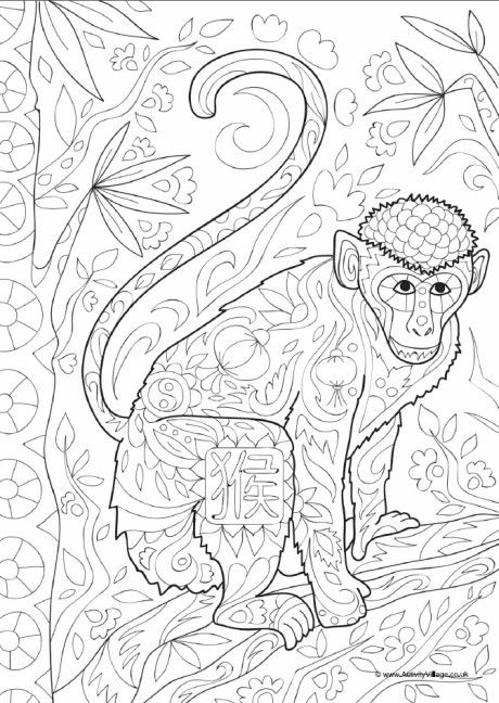 Monkey Doodle Colouring Page