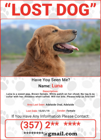 Pawmaw Creates Platform With Instant Alerts To Reunite Lost Pets With Owners In 2020 Losing A Pet Losing A Dog Find Pets