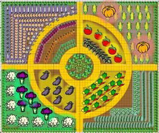 Vegetable garden outline design i love this i will be for Veggie patch layout