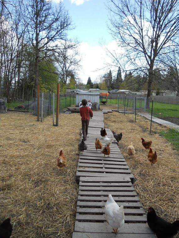 love this pallet walkway. Blue Moon Urban Homestead: A Visit From The DIY Fairy