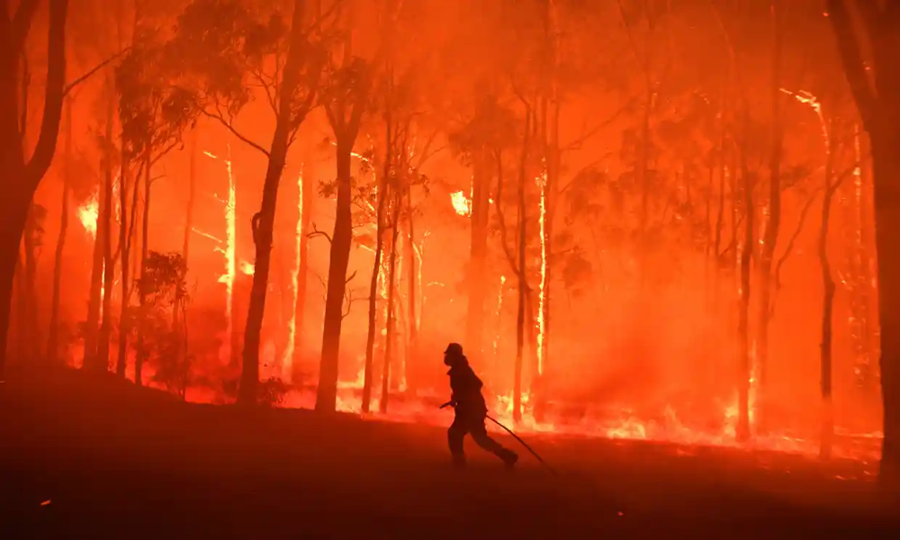 Australia bushfires factcheck are this year's fires