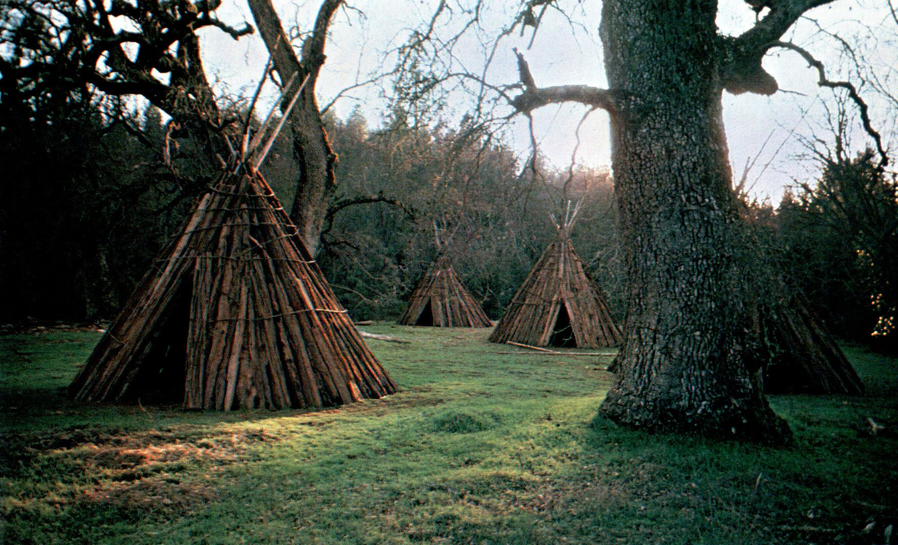 American Indian Houses