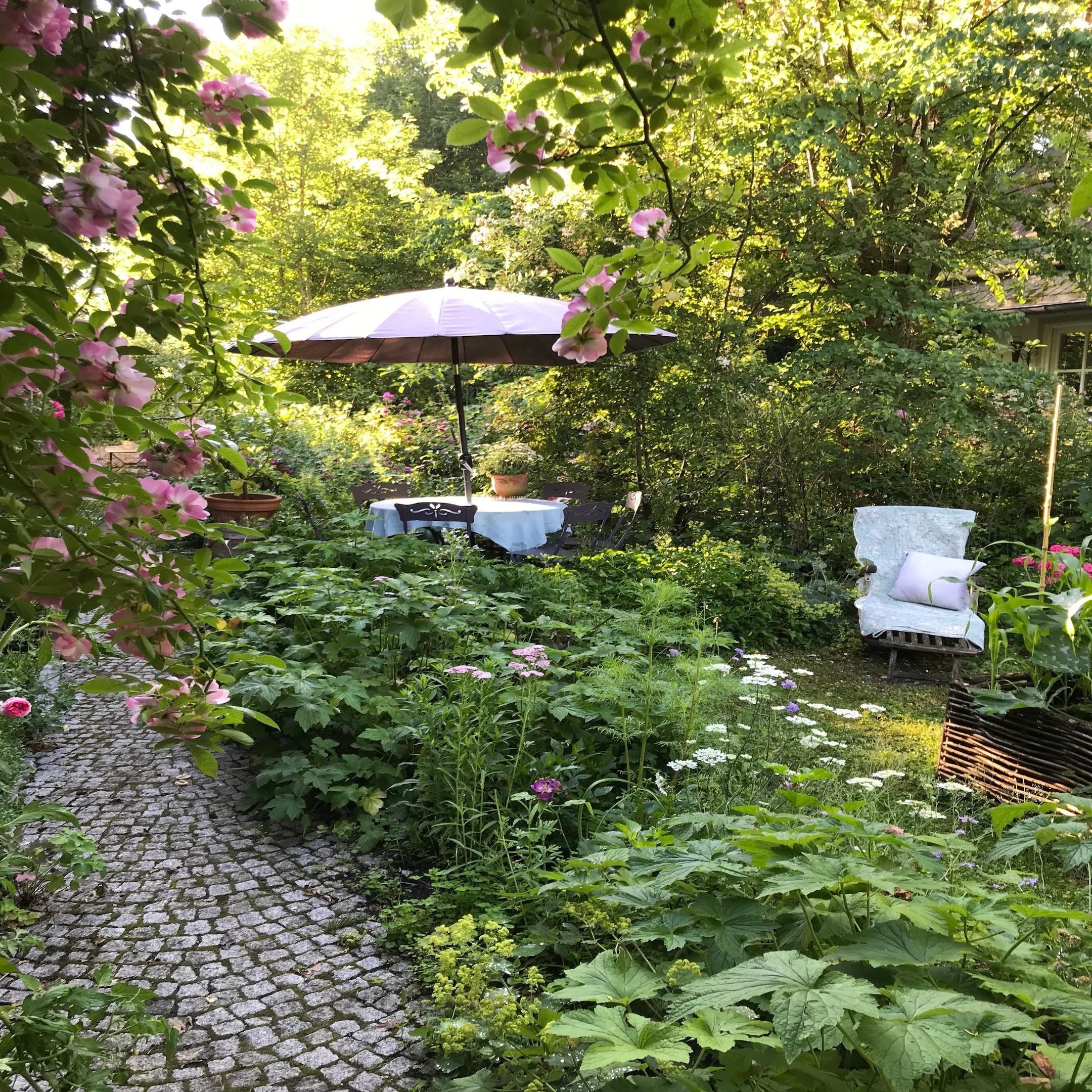 Lieblingspflanzen Blumen Fur Garten Cottage Garten Gruner Garten