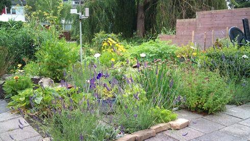 mooie tuinplaatjes - Google zoeken