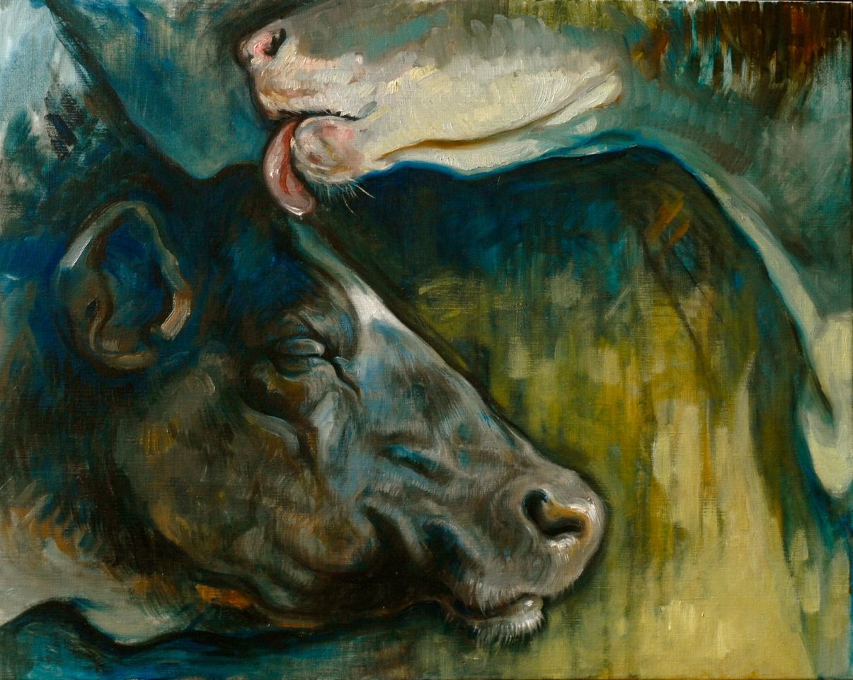 Art Cow Painting In Oil Dairy Cows Ii Malkekoer Ii Oil On Canvas 73x93 Cm 2012 By Artist Anne Gyrite Schutt Dyr Malerier Maling Ko Maleri