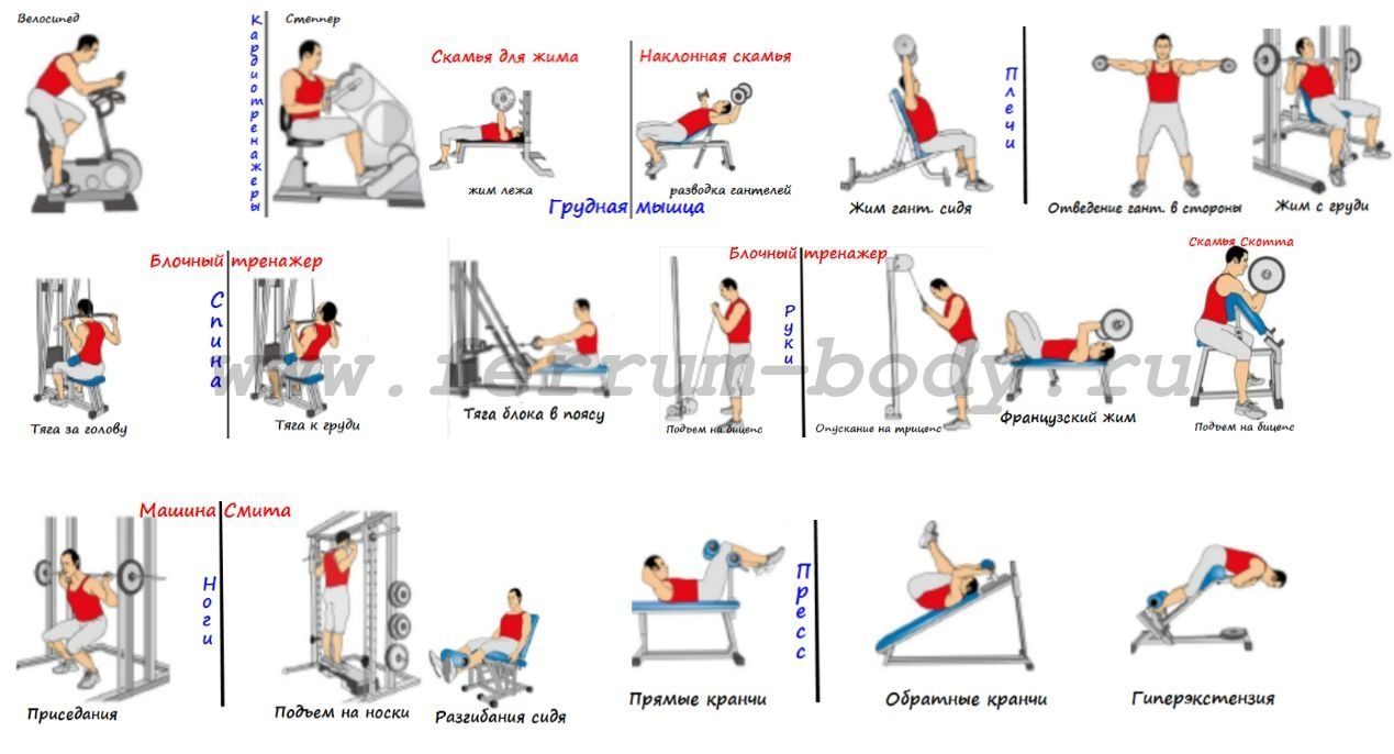 Правильные упражнения на тренажерах